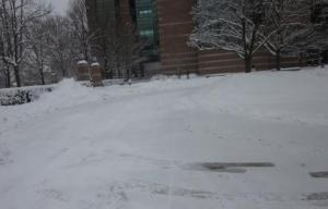 beckman parking lot plowed